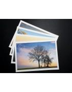 FineArt-Prints